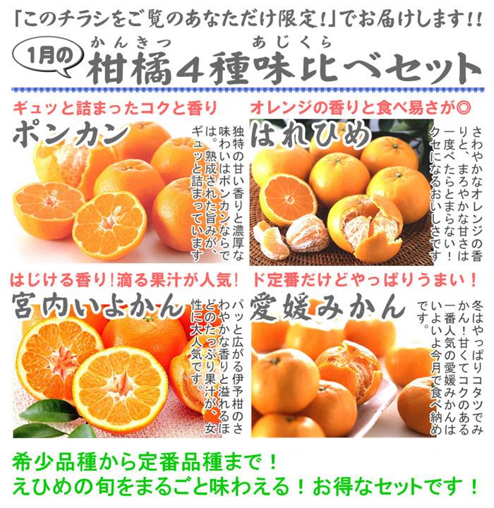 1月の柑橘4種味比べ「満足」セット