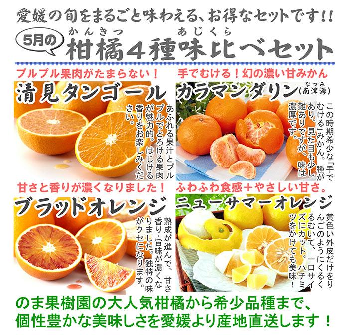 柑橘味くらべセット